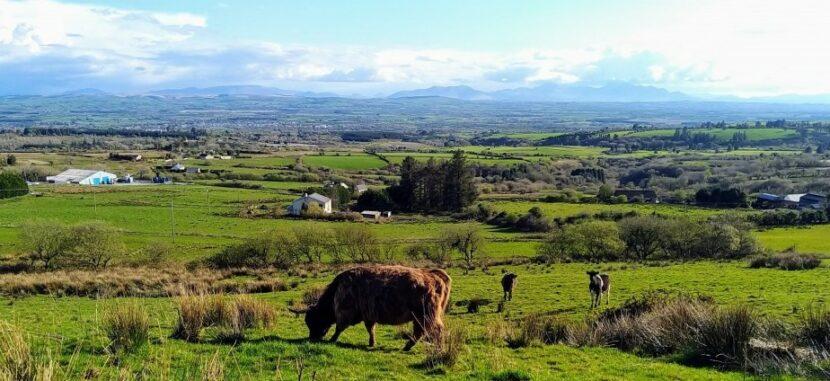 Farmer subsidy payments