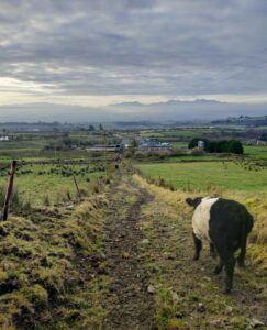 Farming accident articles