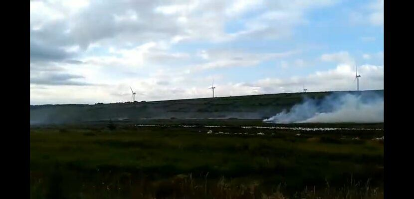 gorse fires in Ireland