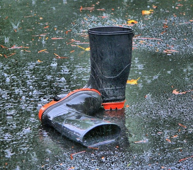best budget wellies