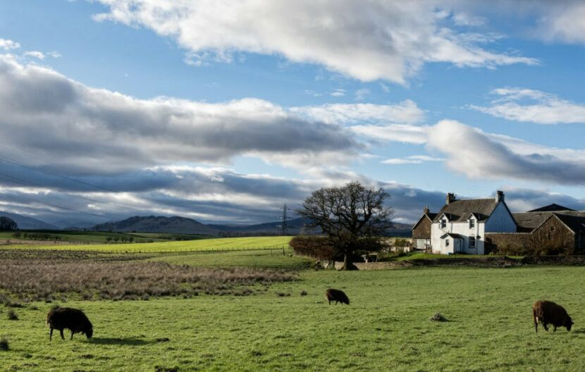 Does farming affect the environment